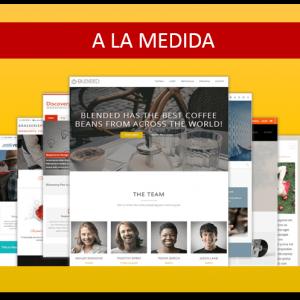 Diseño Sitios Web Plan SmSolucionesalamedida.com